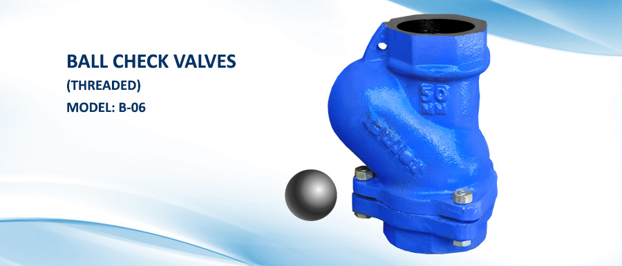Ball Check Valves Threaded Model  B 06